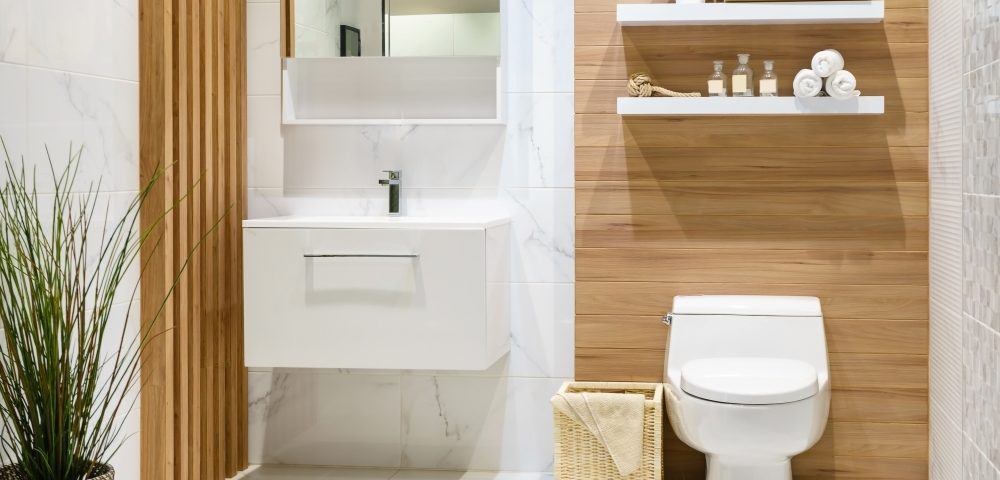 Ducha higiénica para el wc